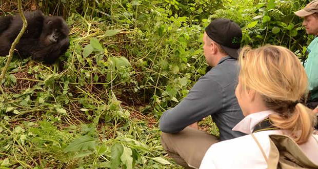 1 day short Rwanda Gorilla Trekking