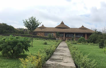 Gorilla solution lodge