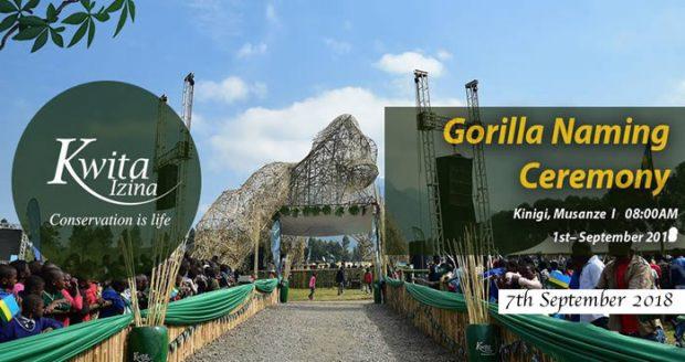 2018-Gorilla-Naming-Ceremony