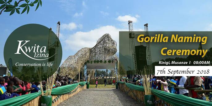 Gorilla Namers at 2018 Kwita Izina Ceremony