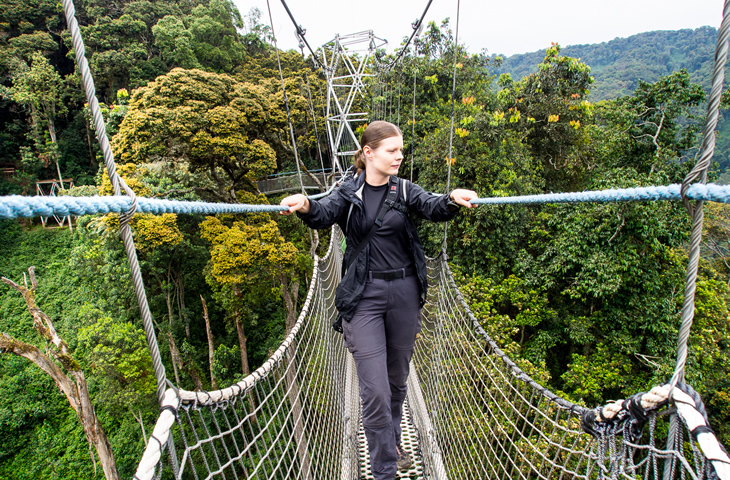 Why Visit Nyungwe Forest National Park