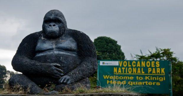 Visiting Volcanoes national park