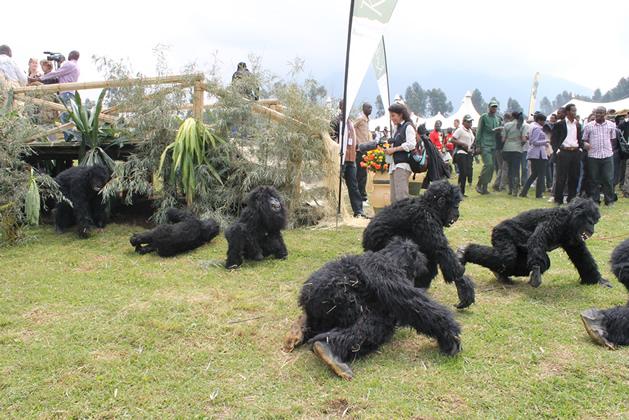 Rwanda's Gorilla Naming Ceremony 2019