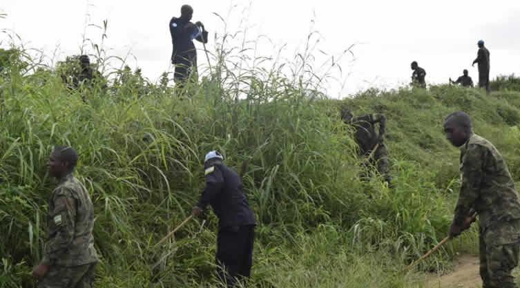 Rebel attack in Volcanoes park Rwanda