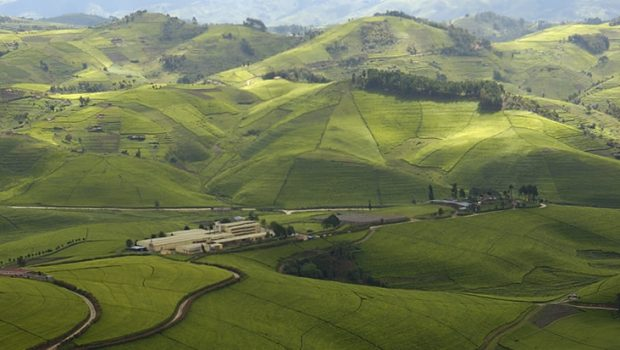 Rwanda Named Among Top 30 Global Travel Destinations For 2020