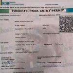 Gorilla Permit Availability in Rwanda