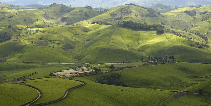 Why visit Rwanda